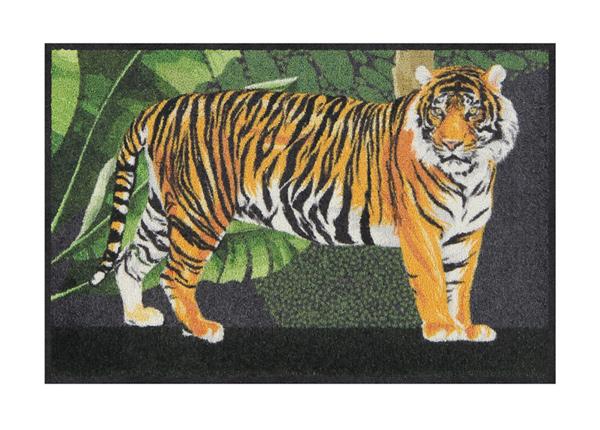 Matto Tiger