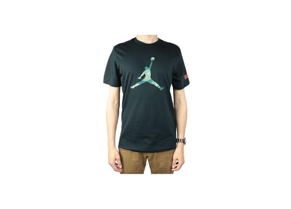 Miesten t-paita Jordan City Of Flight 2 Tee M AT9180-010