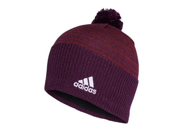 Мужская зимняя шапка adidas Graphic Beanie M CY6074