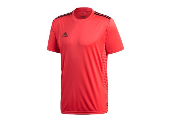 Miesten treenipaita adidas Tango Climalite T-shirt M CD8307