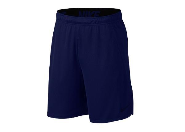 Miesten treenishortsit Nike Dry 4.0 Training Short M 890811-492