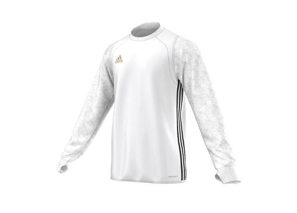 Miesten treenipaita Adidas UFB Top M AZ1872