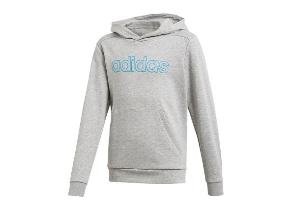 Lasten huppari Adidas Essentials Commercial Linear Hoodie JR DY2973