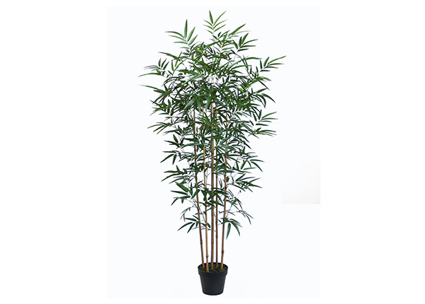 Kunstpuu Bambus 150 cm