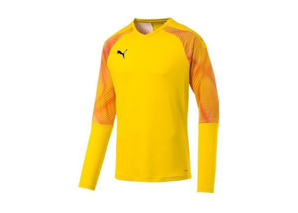 Miesten maalivahdin paita Puma CUP GK Jersey LS M 703771-45