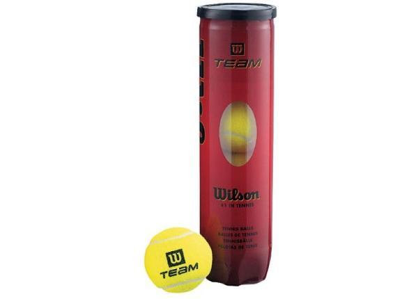 Tennise pallid Wilson Team Practice 4 tükki