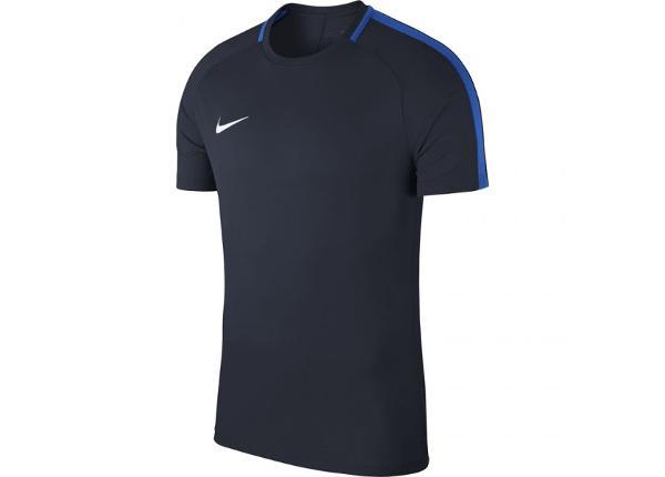 Lasten jalkapallopaita Nike Dry Academy 18 Top SS Jr 893750 451