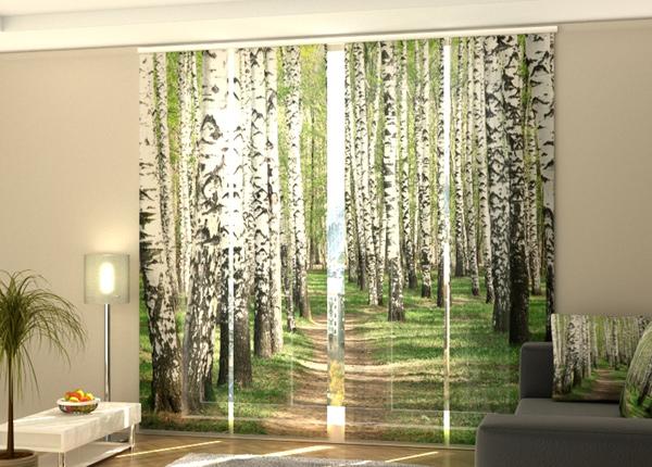 Puolipimentävä paneeliverho Birch forest 240x240 cm