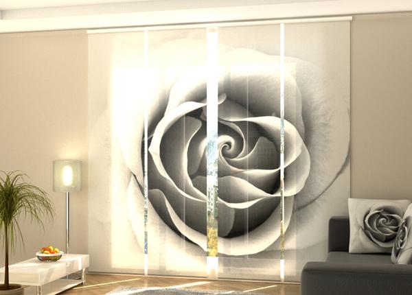 Puolipimentävä paneeliverho Grey Rose 240x240 cm