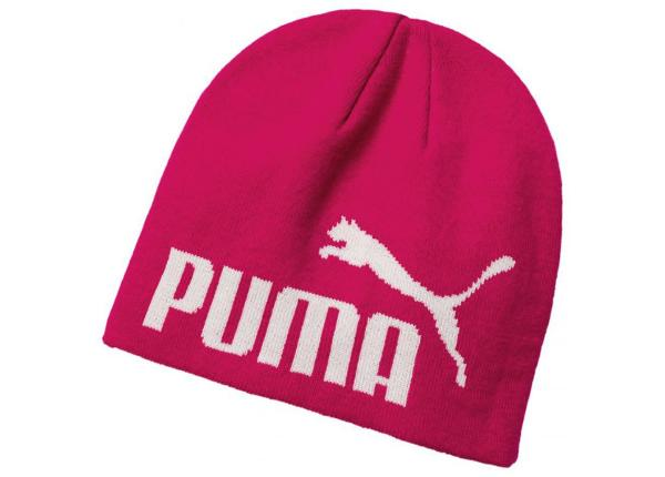 Talvipipo Puma Essential Big Cat Beanie