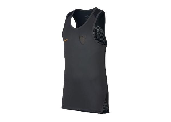 Korvpallisärk meestele Nike LeBron Basketball Top M 894076-060