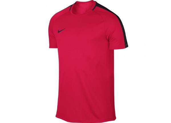 Jalgpallisärk meestele Nike M Dry SS Academy M 832967 653