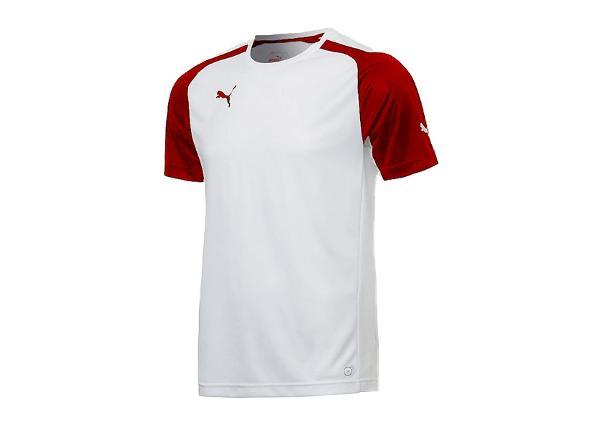 Jalgpallisärk meestele Puma Speed Jersey M 701906-12