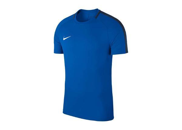 Jalgpallisärk lastele Nike JR Academy 18 T-Shirt Jr 893750-463