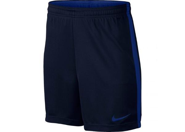 Lühikesed jalgpallipüksid lastele Nike Dry Academy K Jr 832901 459