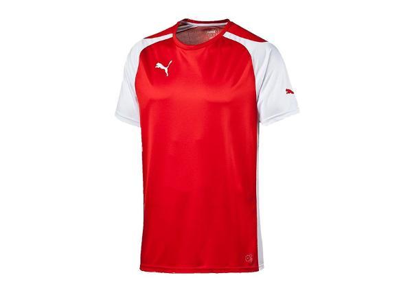 Jalgpallisärk meestele Puma Speed Jersey M 701906-01