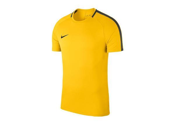 Jalgpallisärk lastele Nike JR Academy 18 Jr 893750-719