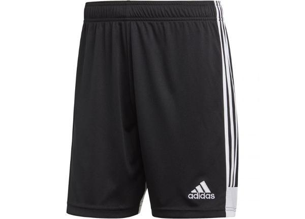Lühikesed püksid meestele adidas Tastigo 19 Shorts M DP3246