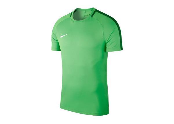 Jalgpallisärk lastele Nike JR Academy 18 T-Shirt Jr 893750-361