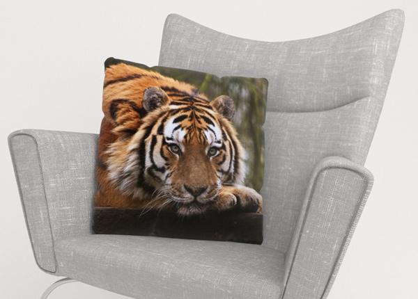 Koristetyynyliina Wisdom of Tiger