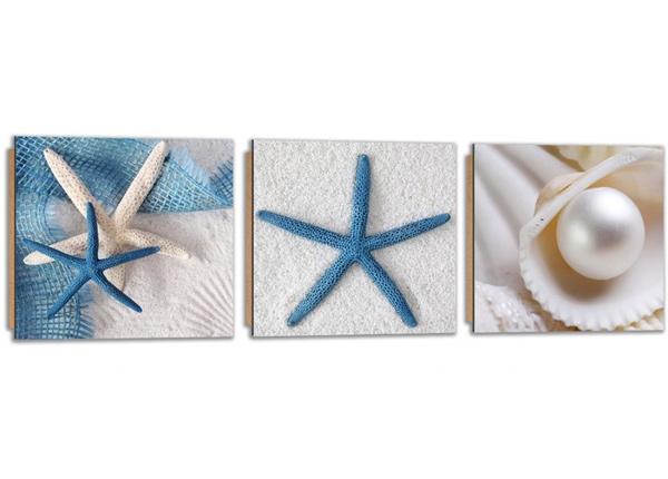 Картина из 3-частей Starfish on the sand