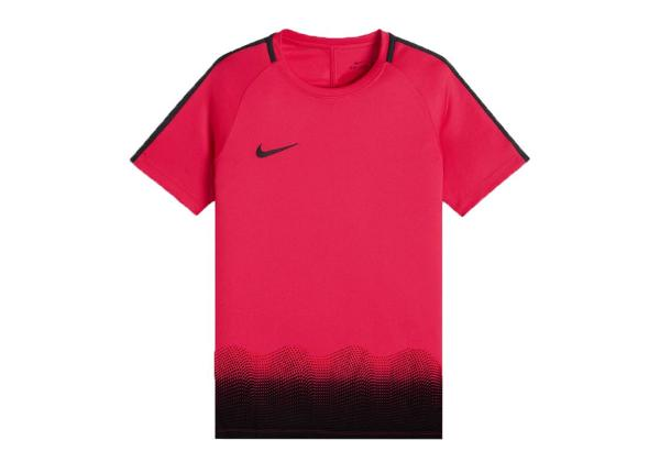 Lasten jalkapallopaita Nike Dry Academy Top GX Jr AJ4225-653