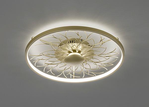 Потолочный LED светильник Diego AA-226750