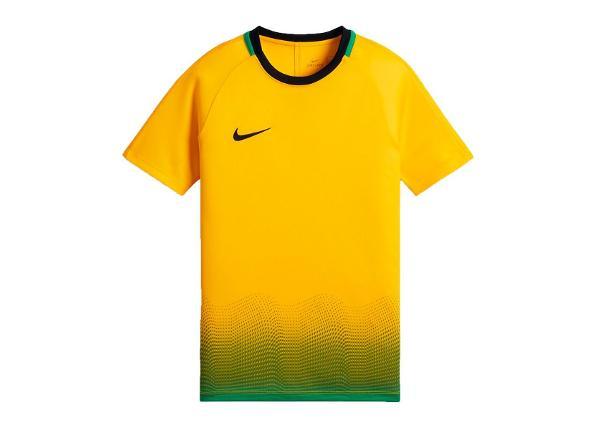 Lasten jalkapallopaita Nike Dry Academy Top GX Jr AJ4225-728