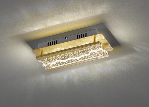 Kattovalaisin LED Elay AA-227651