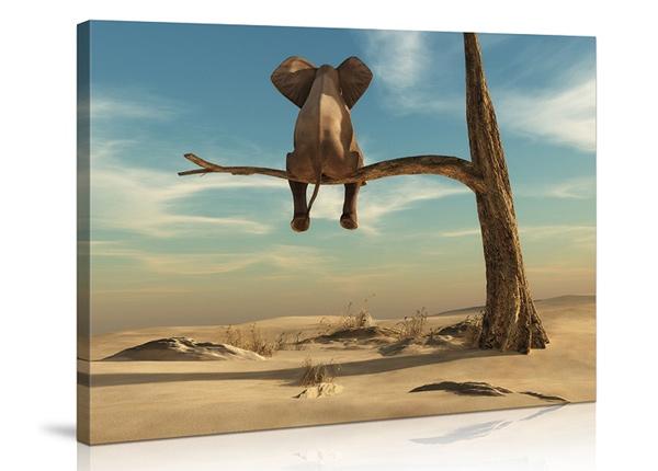Seinätaulu Elephant on tree 60x80 cm ED-227900