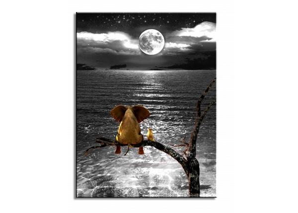 Seinätaulu Elephant moon and the sea 80x60 cm ED-227908