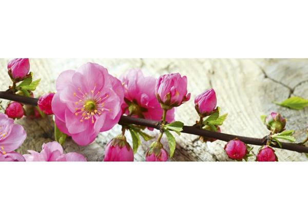 Köögi töötasapinna tagune Sakura