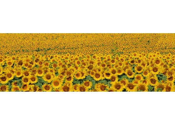 Köögi töötasapinna tagune Sunflowers