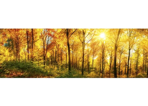 Köögi töötasapinna tagune Sunny forest