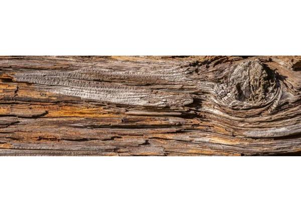Köögi töötasapinna tagune Tree bark