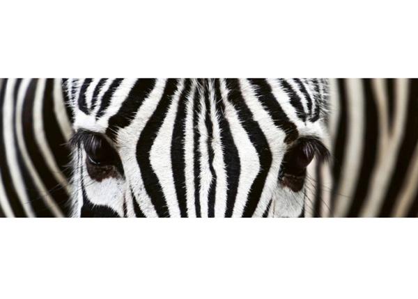 Köögi töötasapinna tagune Zebra