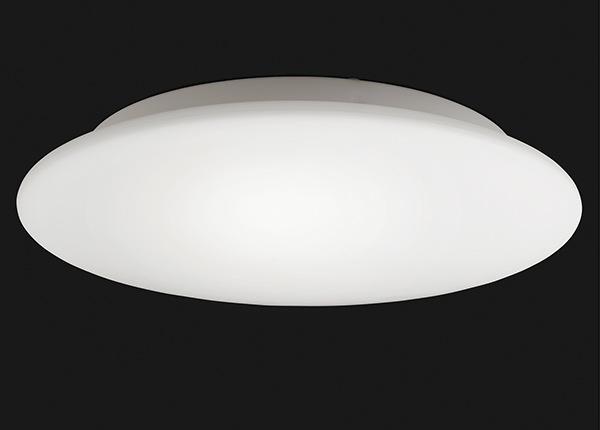 Laelamp Blanco AA-231156