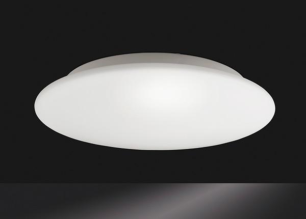 Laelamp Blanco AA-231159