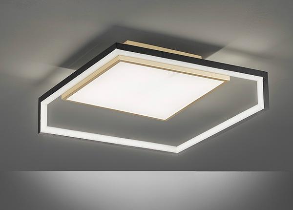 Потолочный светильник Nala LED AA-231327