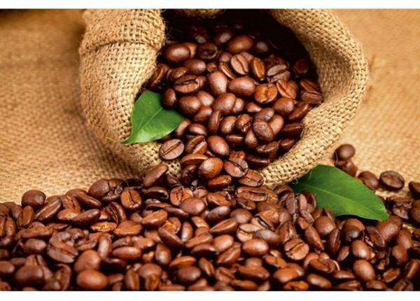Fleece-kuvatapetti Coffee beans