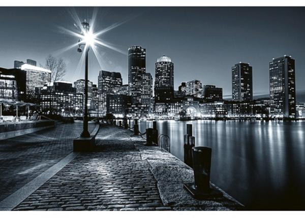 Fleece-kuvatapetti Boston