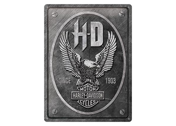 Retro metallposter Harley-Davidson - Metal Eagle 30x40 cm SG-234972