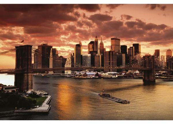 Fleece-kuvatapetti New york