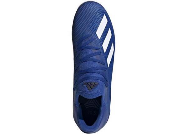 Miesten futsal sisäpelikengät adidas X 19.3 IN M EG7154