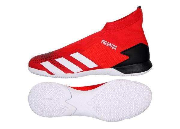 Miesten futsal sisäpelikengät adidas Predator 20.3 LL IN M EE9572