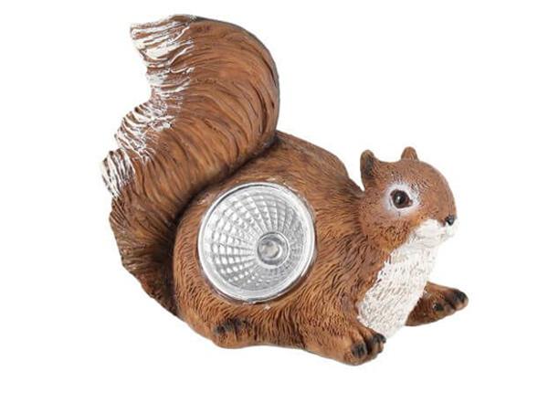 Solar ulkovalaisin Tarmo orava