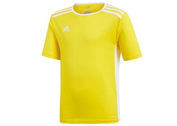 Laste jalgpallisärk Adidas Entrada 18 Jsyy Jr CF1039