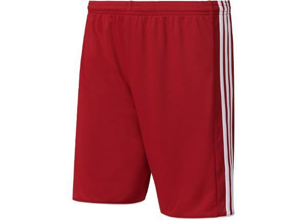 Jalgpalli lühikesed püksid meestele adidas Tastigo 17 M S99143