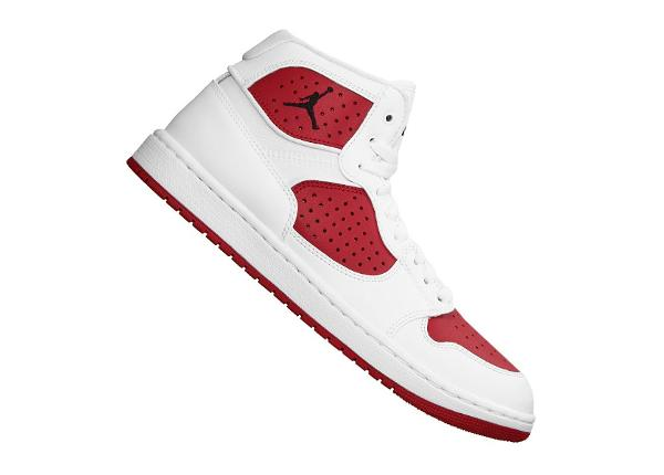 Meeste korvpallijalatsid Nike Jordan Access M AR3762-106