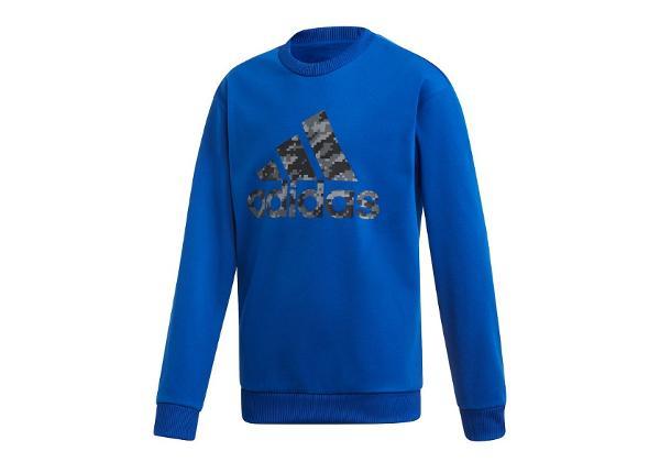 Детская толстовка Adidas ID Crew Jr ED6404
